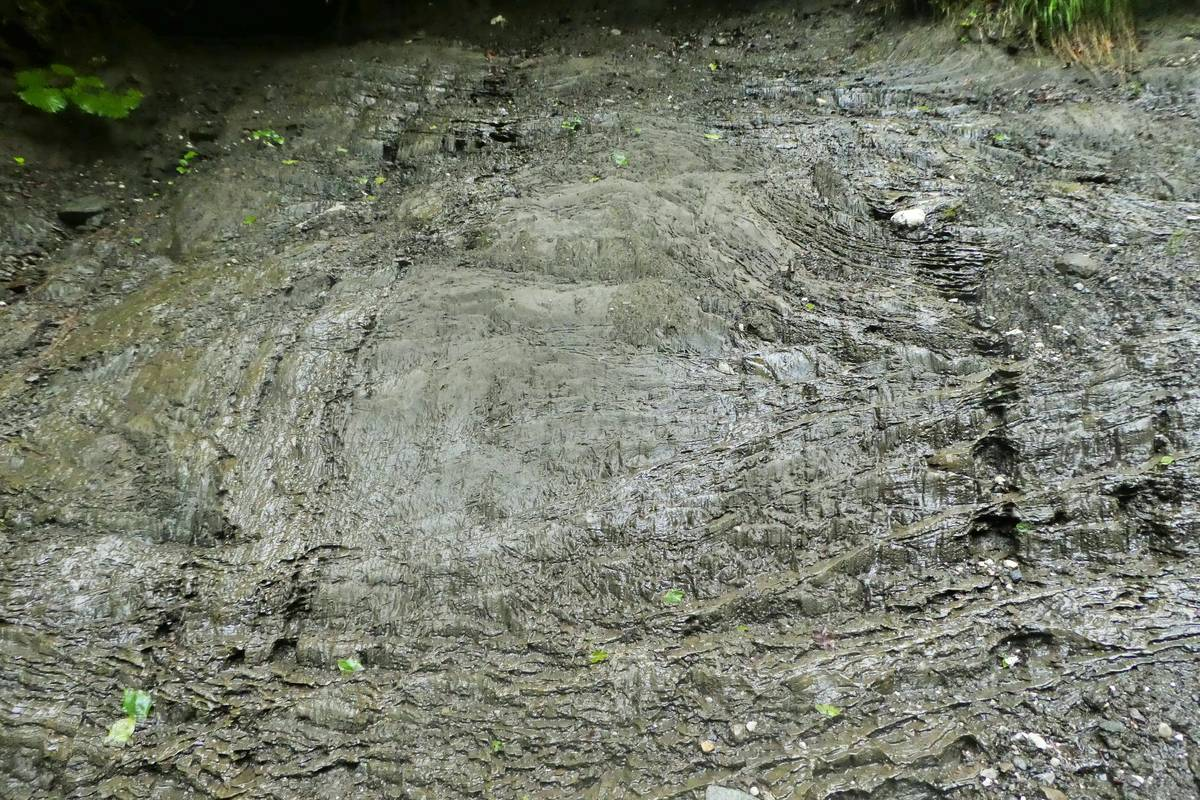 Pont: silty-sandy layers deposited in an ice-contact lake (photo DG).