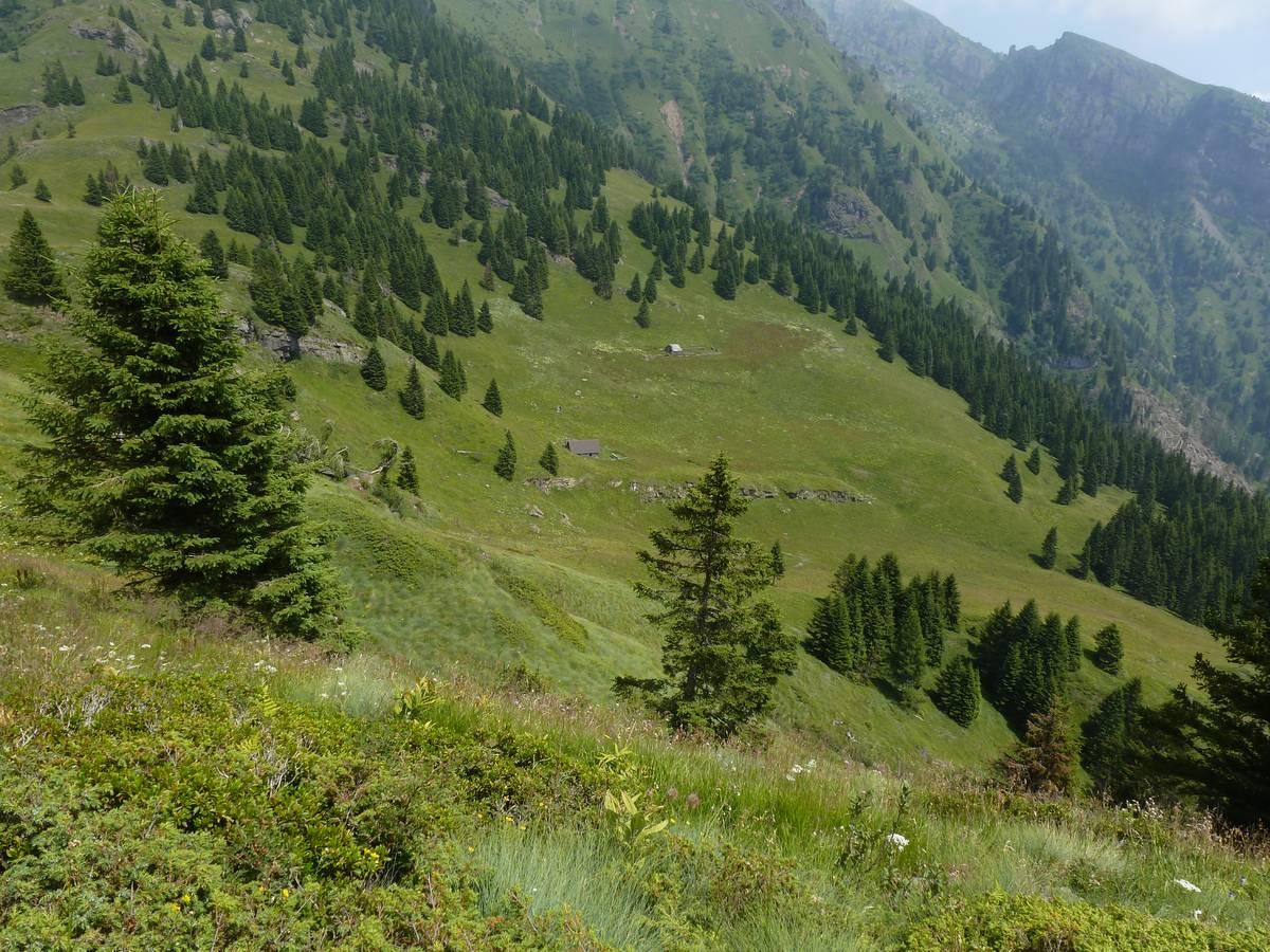 Dal sentiero verso F.lla Caoz verso il M. Caoz (Formazione del M. Fernazza), i Lastei di Pape e Casera ai Doff (foto D.G.).