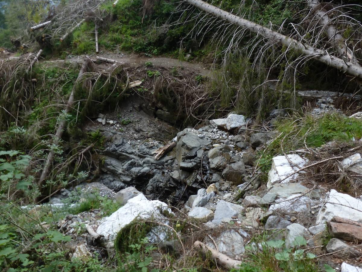 Val Grande, affioramento di pirosseniti, rocce intrusive ultrabasiche di colore scuro (foto D.G.).