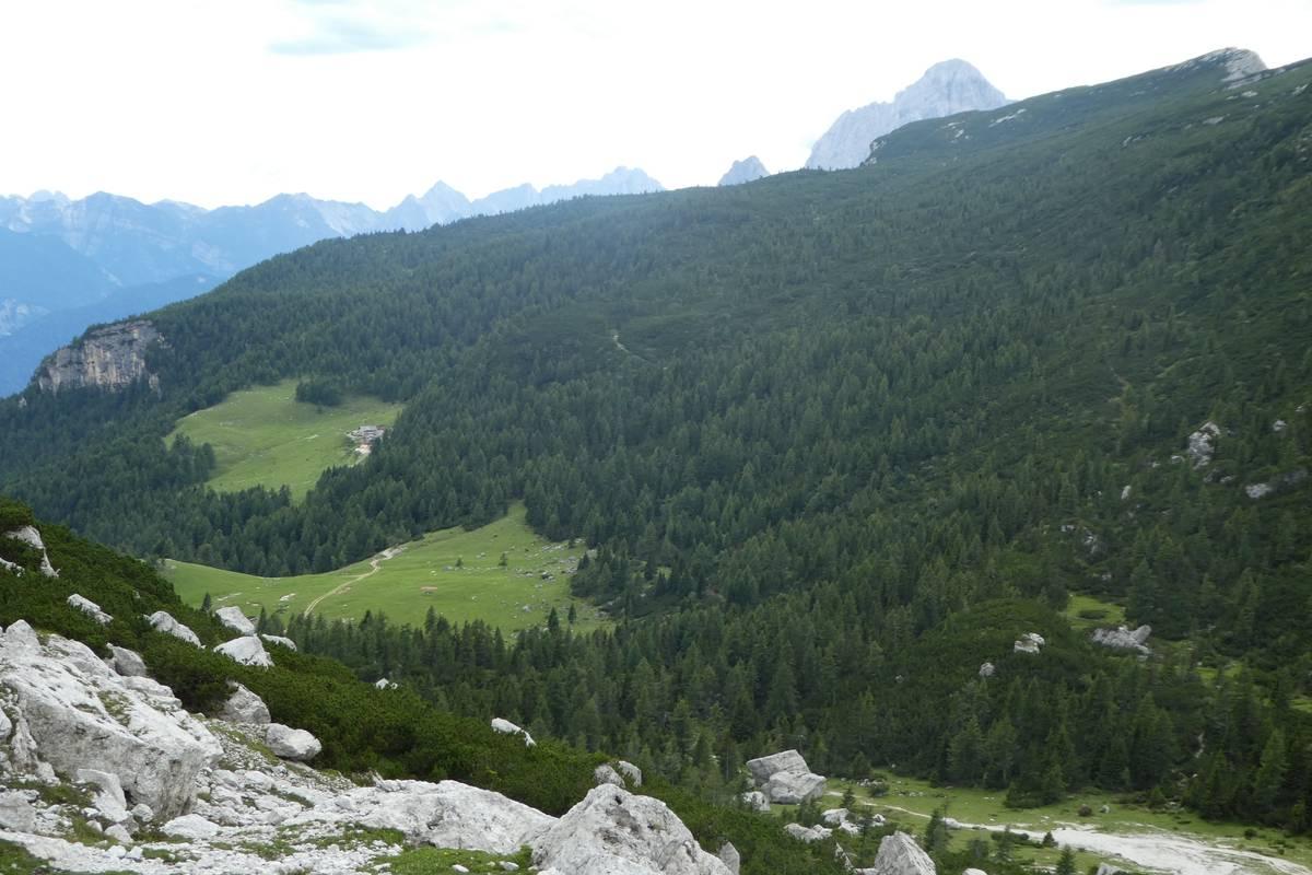 Malga Pelsa alla base del versante del M. Alto di Pelsa (foto D.G.).