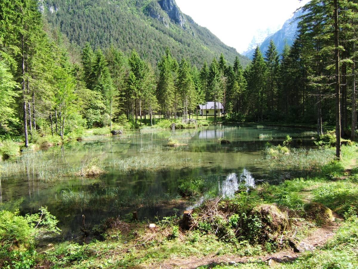 Il laghetto delle Peschiere (prima della tempesta Vaia)