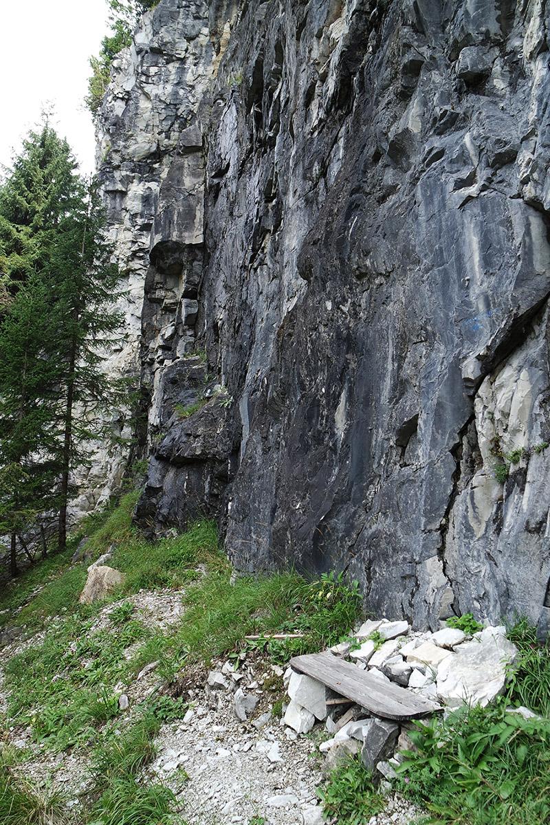 Blick auf das Dolomitgestein im ehemaligen Steinbruch bei Wattenberg